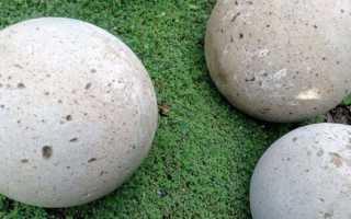 Шары для сада из бетона своими руками: подготовка работы