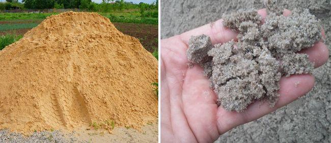 Лучше отдавать предпочтение сероватому песку, чем желтому