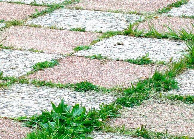 Между плиткой часто прорастает трава